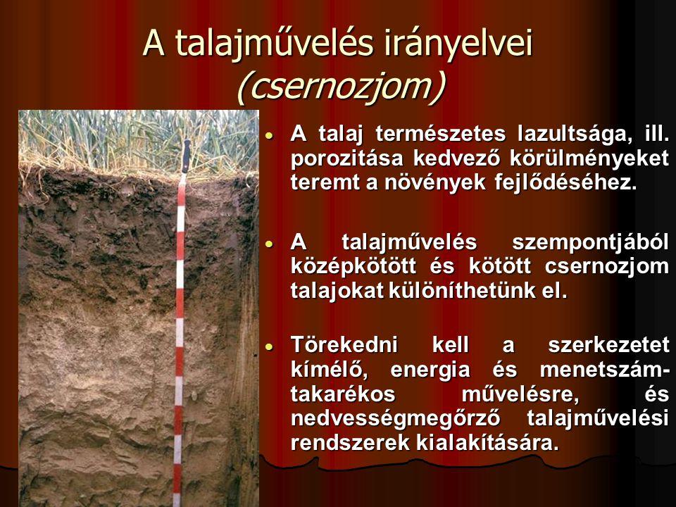 A talajművelés irányelvei (csernozjom)  A talaj természetes lazultsága, ill. porozitása kedvező körülményeket teremt a növények fejlődéséhez.  A tal