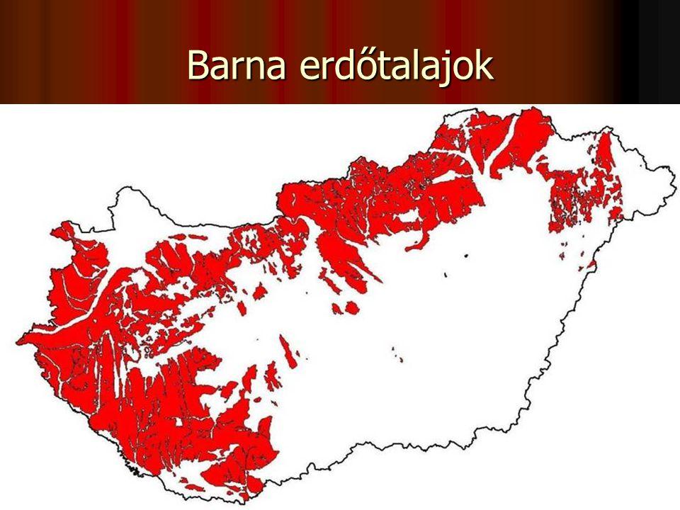 A művelést befolyásoló talajtulajdonságok (erdő)  a talajszelvény kilúgzási (A) és felhalmozódási (B) szintre tagozódik,  az A szintre a savanyúság a B szintre nagy agyagtartalom jellemző,  a szelvény kedvezőtlen szerkezetű, tömődött, a vízbefogadó képessége rossz,  vízáteresztő képessége a B szintnek a legkisebb,