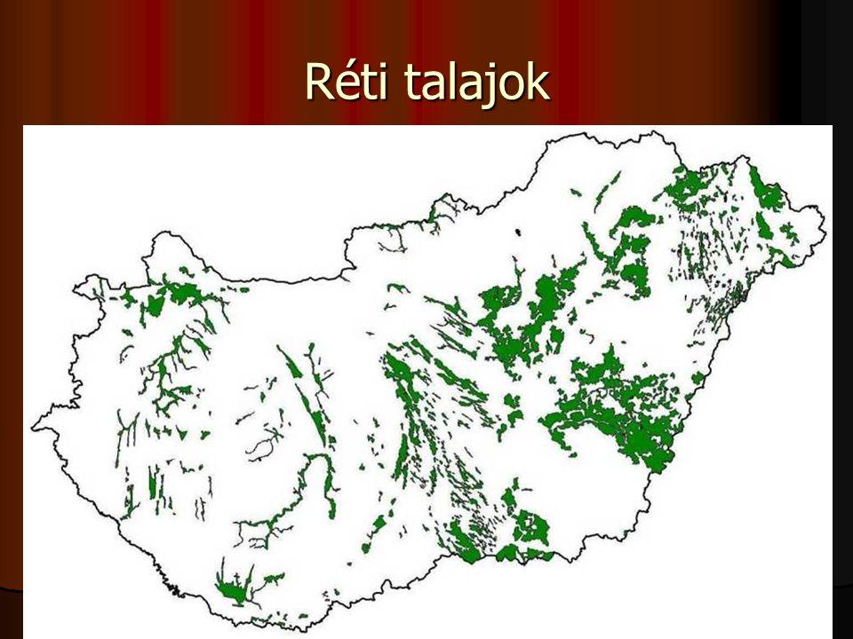 A talajművelés irányelvei (láp)  kotutalajok alkalmasak a szántóföldi művelésre,  rövid tenyészidejű növényeket tanácsos termeszteni,  talajműveléshez alacsony talaj-nyomású erőgépek használhatók (gumiheveder, duplakerék),  A talaj erősen gyomosodik