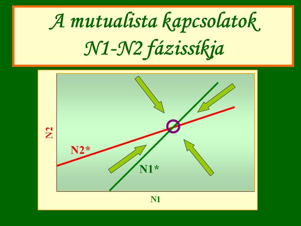 A mutualista kapcsolatok N1-N2 fázissíkja N1* N2*