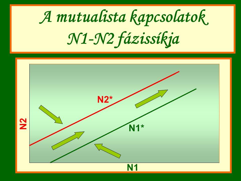 A mutualista kapcsolatok N1-N2 fázissíkja N1* N2 N1 N2* N1*