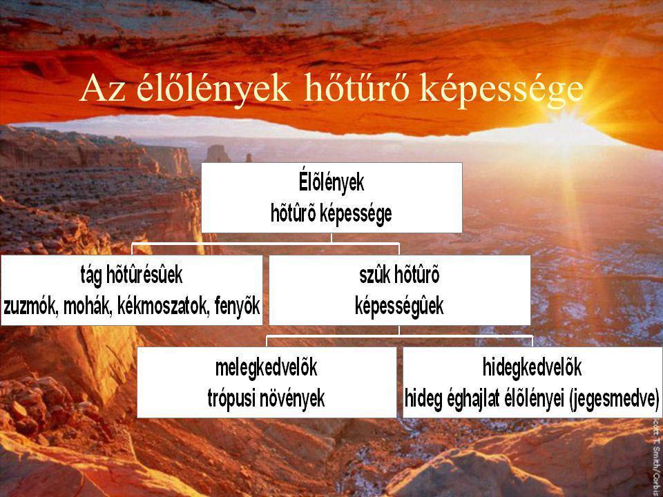 A hőmérséklet A hőmérséklet függ: napsugárzás, domborzat, légköri viszonyok Átlaghőmérséklet csökken: sarkok felé, tengerszinttől felfelé (0,5 o C/100