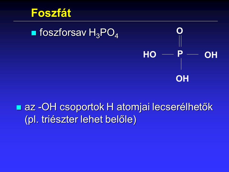 Foszfát n foszforsav H 3 PO 4 P O OH HO n az -OH csoportok H atomjai lecserélhetők (pl. triészter lehet belőle)