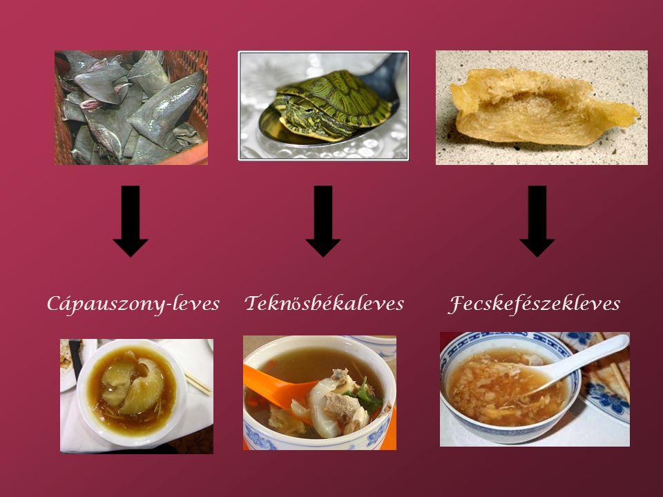 Cápauszony-levesTekn ő sbékalevesFecskefészekleves
