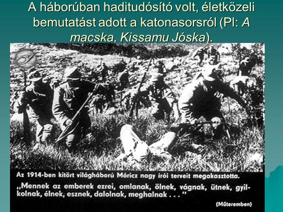 A háborúban haditudósító volt, életközeli bemutatást adott a katonasorsról (Pl: A macska, Kissamu Jóska).