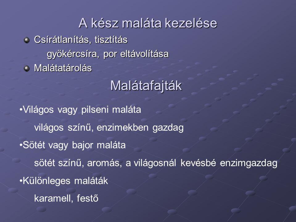 A kész maláta kezelése Csírátlanítás, tisztítás gyökércsíra, por eltávolítása Malátatárolás Malátafajták Világos vagy pilseni maláta világos színű, en