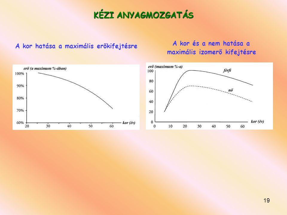 19 KÉZI ANYAGMOZGATÁS A kor hatása a maximális erőkifejtésre A kor és a nem hatása a maximális izomerő kifejtésre