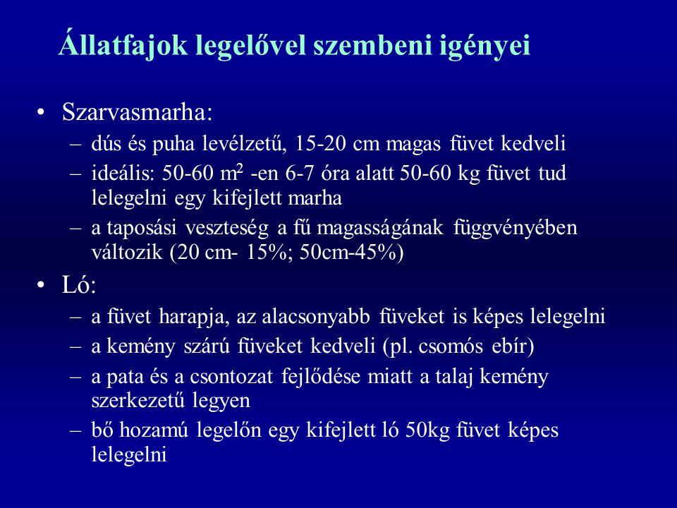 Állatfajok legelővel szembeni igényei Szarvasmarha: –dús és puha levélzetű, 15-20 cm magas füvet kedveli –ideális: 50-60 m 2 -en 6-7 óra alatt 50-60 k