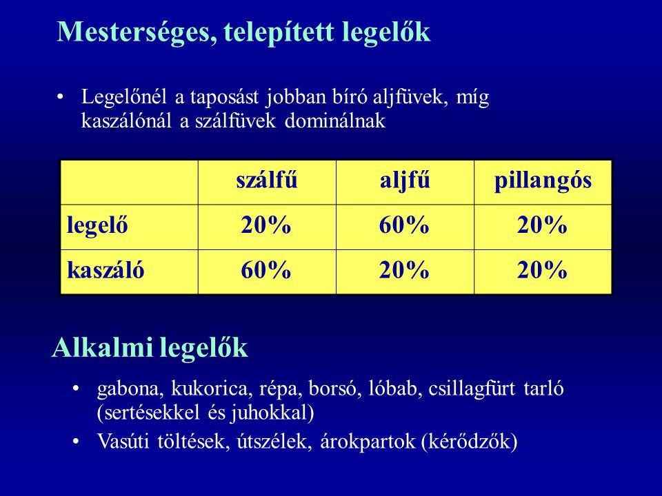 Mesterséges, telepített legelők Legelőnél a taposást jobban bíró aljfüvek, míg kaszálónál a szálfüvek dominálnak szálfűaljfűpillangós legelő20%60%20%