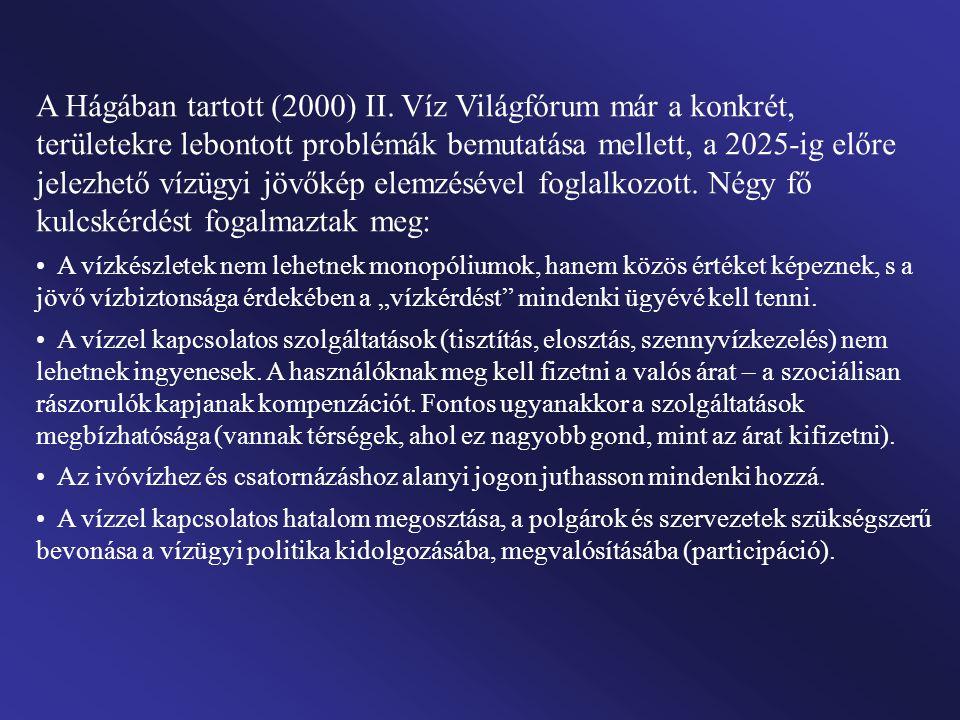 A Hágában tartott (2000) II. Víz Világfórum már a konkrét, területekre lebontott problémák bemutatása mellett, a 2025-ig előre jelezhető vízügyi jövők