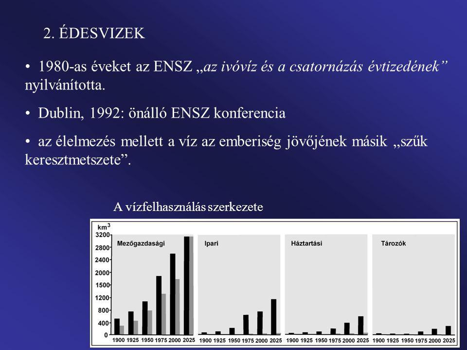"""2.ÉDESVIZEK 1980-as éveket az ENSZ """"az ivóvíz és a csatornázás évtizedének nyilvánította."""