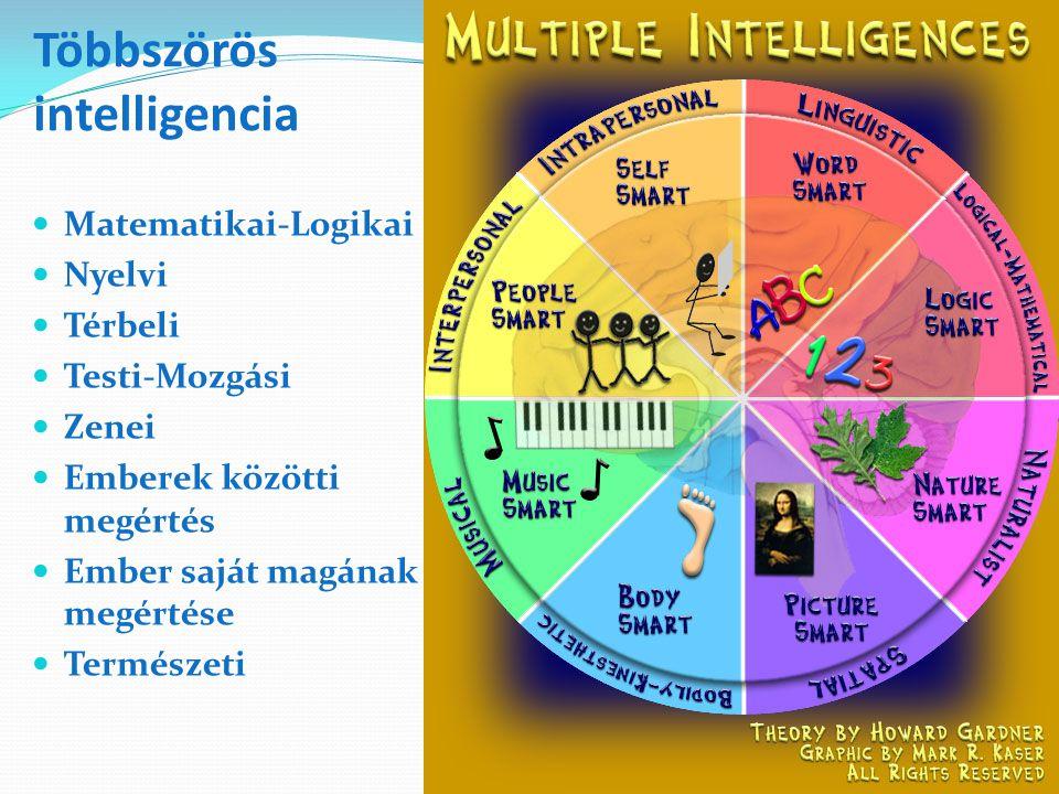 Többszörös intelligencia Matematikai-Logikai Nyelvi Térbeli Testi-Mozgási Zenei Emberek közötti megértés Ember saját magának megértése Természeti