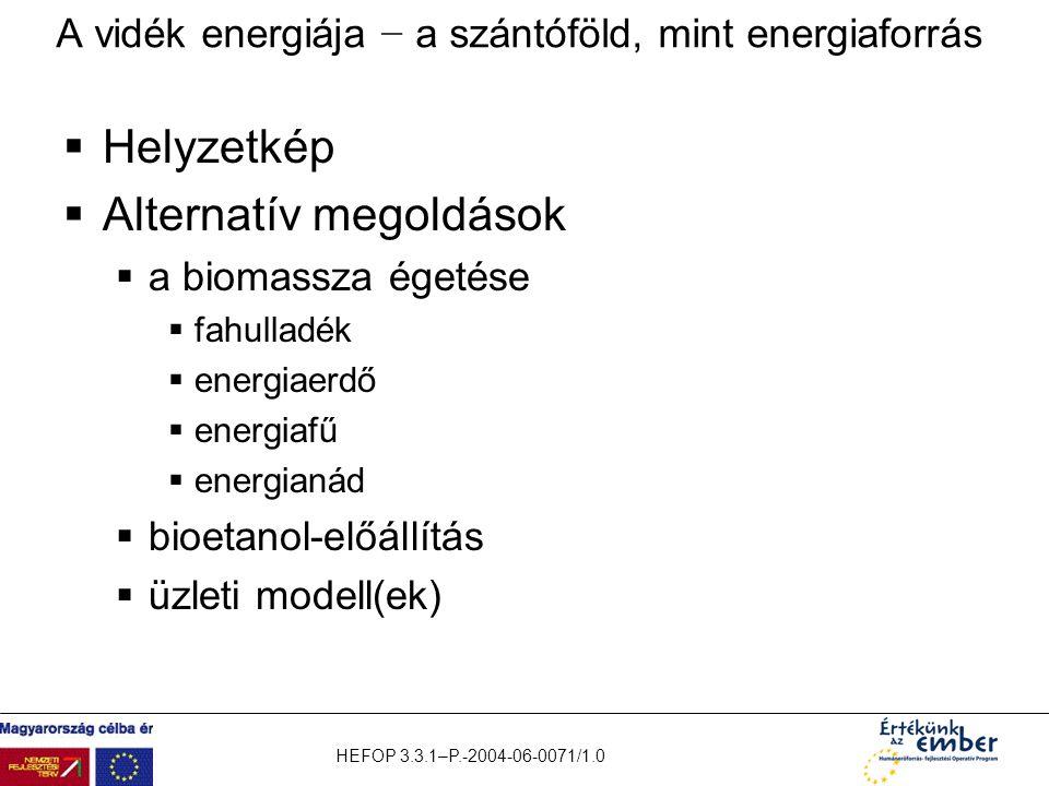 HEFOP 3.3.1–P.-2004-06-0071/1.0 A vidék energiája − a szántóföld, mint energiaforrás  Helyzetkép  Alternatív megoldások  a biomassza égetése  fahu