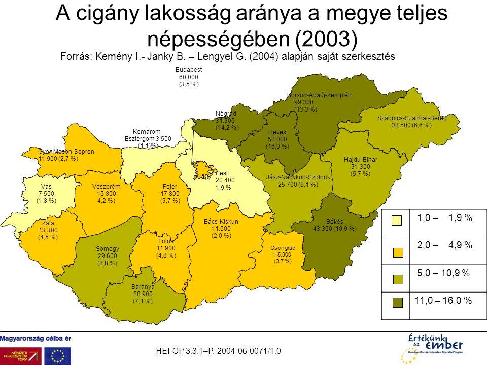 HEFOP 3.3.1–P.-2004-06-0071/1.0 1,0 – 1,9 % 2,0 – 4,9 % 5,0 – 10,9 % 11,0 – 16,0 % A cigány lakosság aránya a megye teljes népességében (2003) Baranya