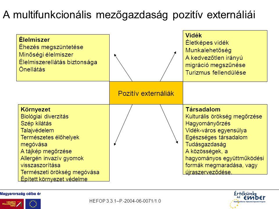 HEFOP 3.3.1–P.-2004-06-0071/1.0 A multifunkcionális mezőgazdaság pozitív externáliái Pozitív externáliák Vidék Életképes vidék Munkalehetőség A kedvez