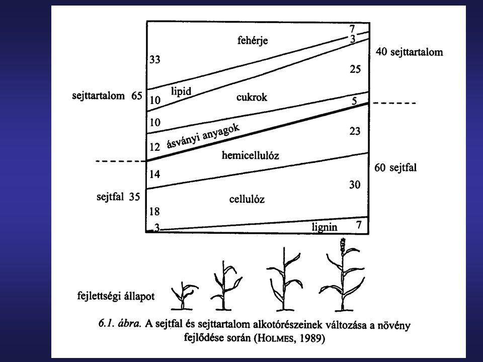 Szemestakarmányok szárítása  a szakszerűtlen szárítás jelentősen csökkenti a termék minőségét  a mag hőmérséklete lehetőleg a szárítás közben ne haladja meg a 60-80 o C-ot, ehhez az kell, hogy a szárító levegő hőmérséklete ne haladja meg a 80- 130 o C-ot  a túlszárítás csökkenti az aminosavak hasznosíthatóságát, a magvak üvegesen törnek (gyomorfekély), hajszálrepedések alakulnak ki (oxidáció)  kukoricánál az egyenletesebb nedvességleadás miatt célszerű két menetes szárítást alkalmazni (először 18-20%-ra, majd ezt követően 14%ra)