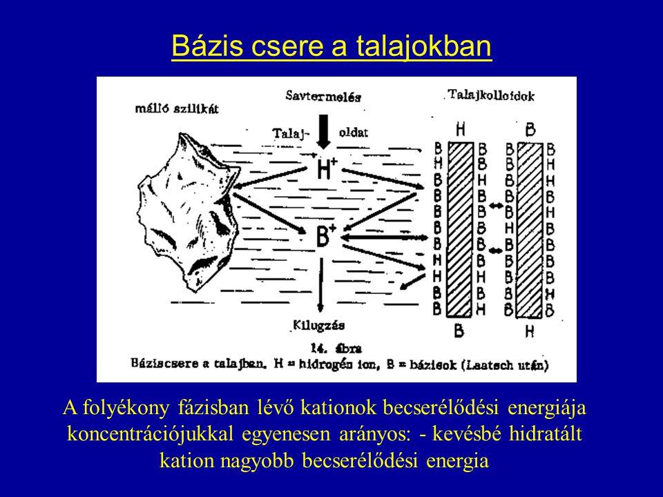 Bázis csere a talajokban A folyékony fázisban lévő kationok becserélődési energiája koncentrációjukkal egyenesen arányos: - kevésbé hidratált kation n