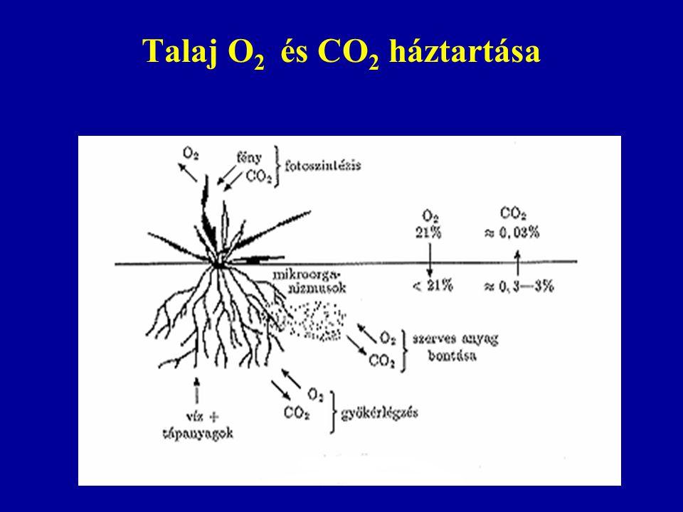 Talaj O 2 és CO 2 háztartása