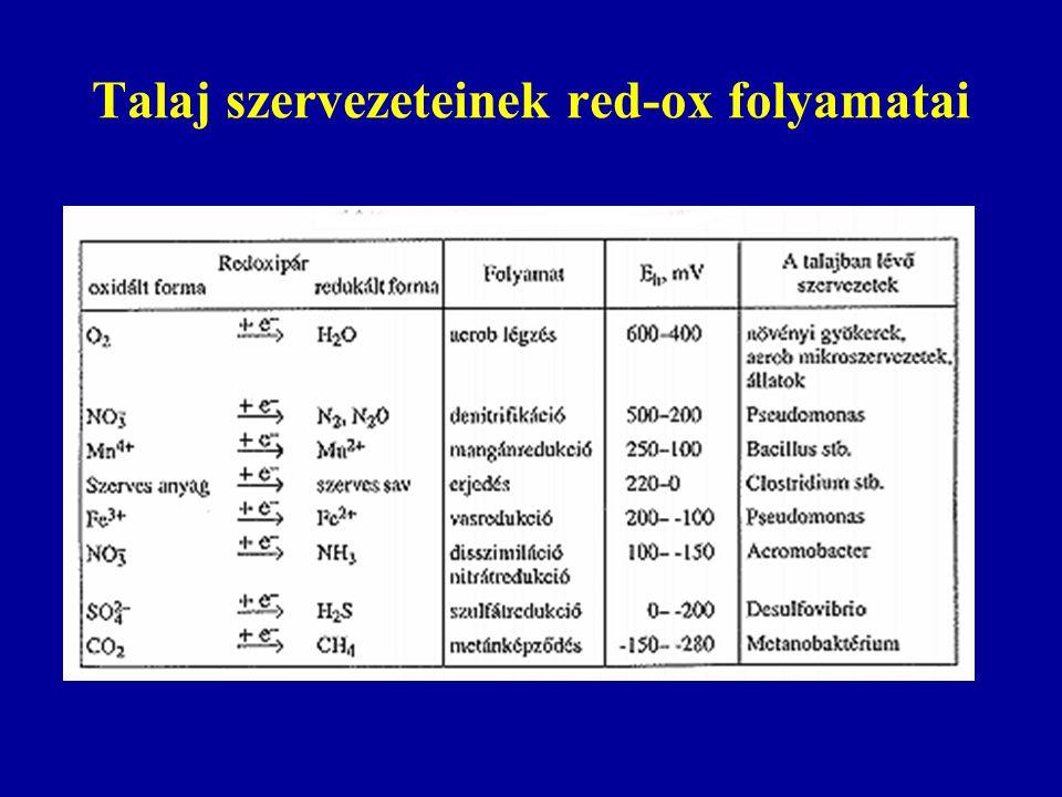 Talaj szervezeteinek red-ox folyamatai