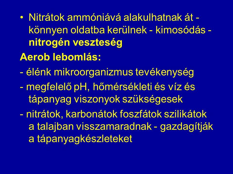 Nitrátok ammóniává alakulhatnak át - könnyen oldatba kerülnek - kimosódás - nitrogén veszteség Aerob lebomlás: - élénk mikroorganizmus tevékenység - m