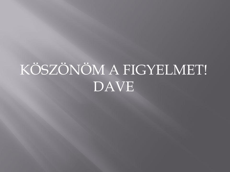 KÖSZÖNÖM A FIGYELMET! DAVE