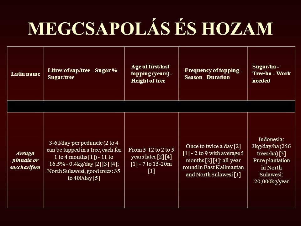MEGCSAPOLÁS ÉS HOZAM Latin name Litres of sap/tree - Sugar % - Sugar/tree Age of first/last tapping (years) - Height of tree Frequency of tapping - Season - Duration Sugar/ha - Tree/ha - Work needed Arenga pinnata or saccharifera 3-6 l/day per peduncle (2 to 4 can be tapped in a tree, each for 1 to 4 months [1]) - 11 to 16.5% - 0.4kg/day [2] [3] [4]; North Sulawesi, good trees: 35 to 40l/day [5] From 5-12 to 2 to 5 years later [2] [4] [1] - 7 to 15-20m [1] Once to twice a day [2] [1] - 2 to 9 with average 5 months [2] [4]; all year round in East Kalimantan and North Sulawesi [1] Indonesia: 3kg/day/ha (256 trees/ha) [5] Pure plantation in North Sulawesi: 20,000kg/year