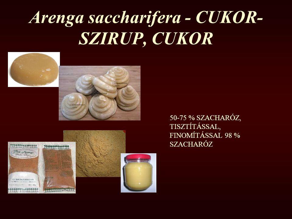 Arenga saccharifera - CUKOR- SZIRUP, CUKOR 50-75 % SZACHARÓZ, TISZTÍTÁSSAL, FINOMÍTÁSSAL 98 % SZACHARÓZ
