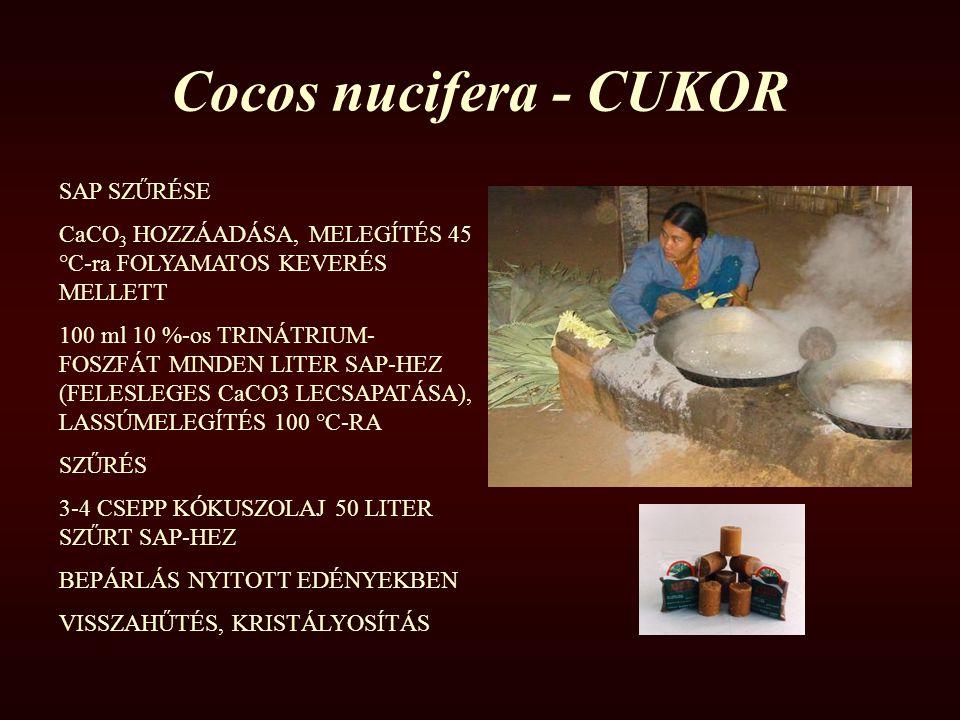 Cocos nucifera - CUKOR SAP SZŰRÉSE CaCO 3 HOZZÁADÁSA, MELEGÍTÉS 45 °C-ra FOLYAMATOS KEVERÉS MELLETT 100 ml 10 %-os TRINÁTRIUM- FOSZFÁT MINDEN LITER SA