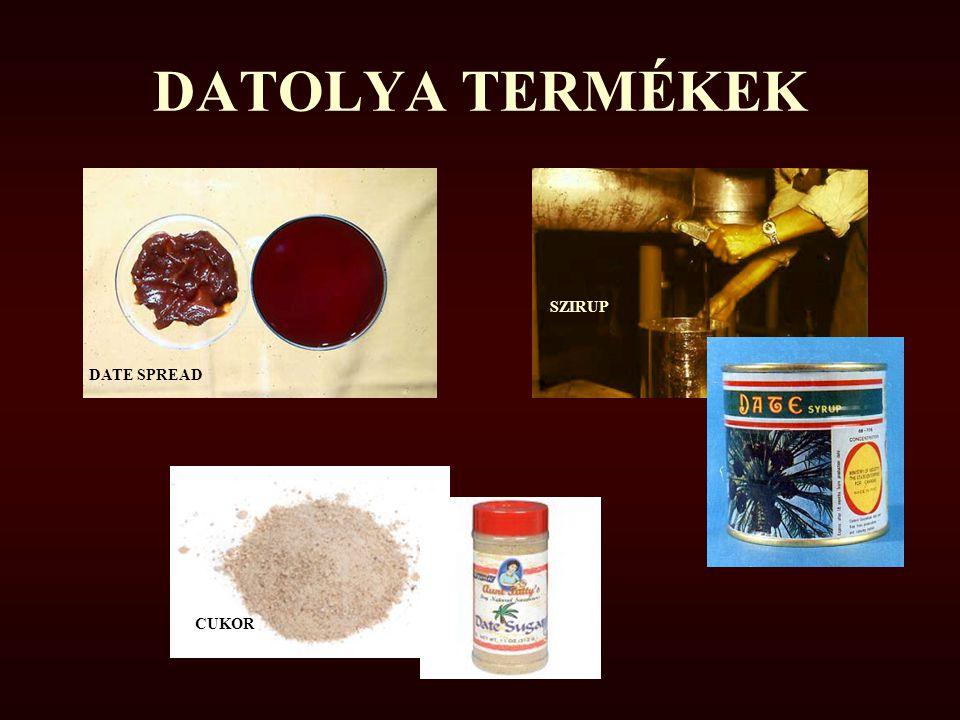 DATOLYA TERMÉKEK DATE SPREAD SZIRUP CUKOR