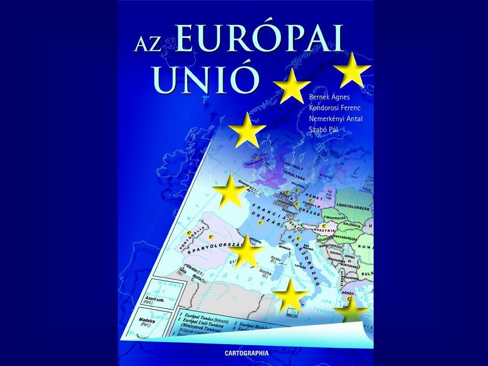 Az Európai Unió12 Az amerikai piacgazdasági modell  Fejlett és versenyképes pénzpiac  Erős fogyasztási orientáció  Nagy mértékű rugalmasság  Versengő magángazdaság  Minimális állami beavatkozás  A vezető érdekcsoportok politikai szerepe