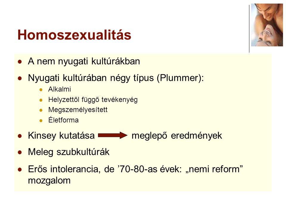 Homoszexualitás A nem nyugati kultúrákban Nyugati kultúrában négy típus (Plummer): Alkalmi Helyzettől függő tevékenyég Megszemélyesített Életforma Kin