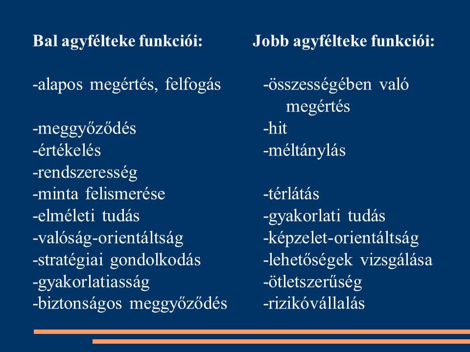 Bal agyfélteke funkciói: Jobb agyfélteke funkciói: -alapos megértés, felfogás-összességében való megértés -meggyőződés-hit -értékelés-méltánylás -rend