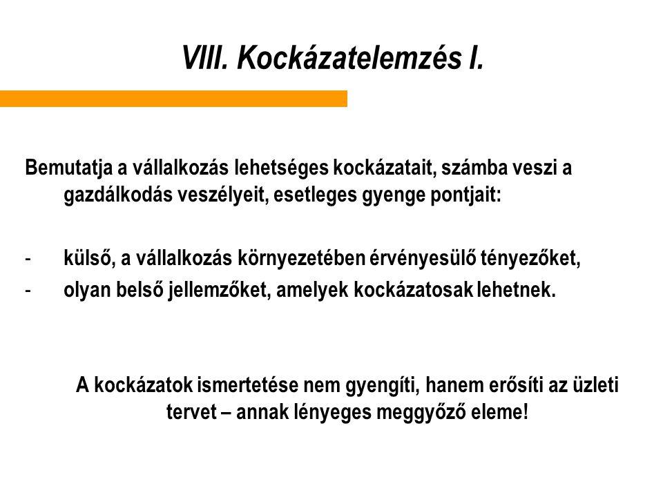 VIII.Kockázatelemzés I.