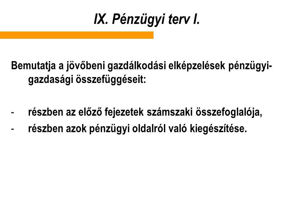 IX.Pénzügyi terv I.