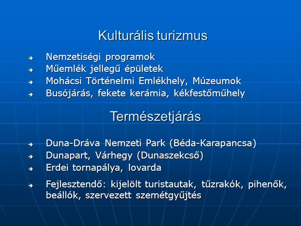 Kulturális turizmus  Nemzetiségi programok  Műemlék jellegű épületek  Mohácsi Történelmi Emlékhely, Múzeumok  Busójárás, fekete kerámia, kékfestőműhely  Duna-Dráva Nemzeti Park (Béda-Karapancsa)  Dunapart, Várhegy (Dunaszekcső)  Erdei tornapálya, lovarda  Fejlesztendő: kijelölt turistautak, tűzrakók, pihenők, beállók, szervezett szemétgyűjtés Természetjárás