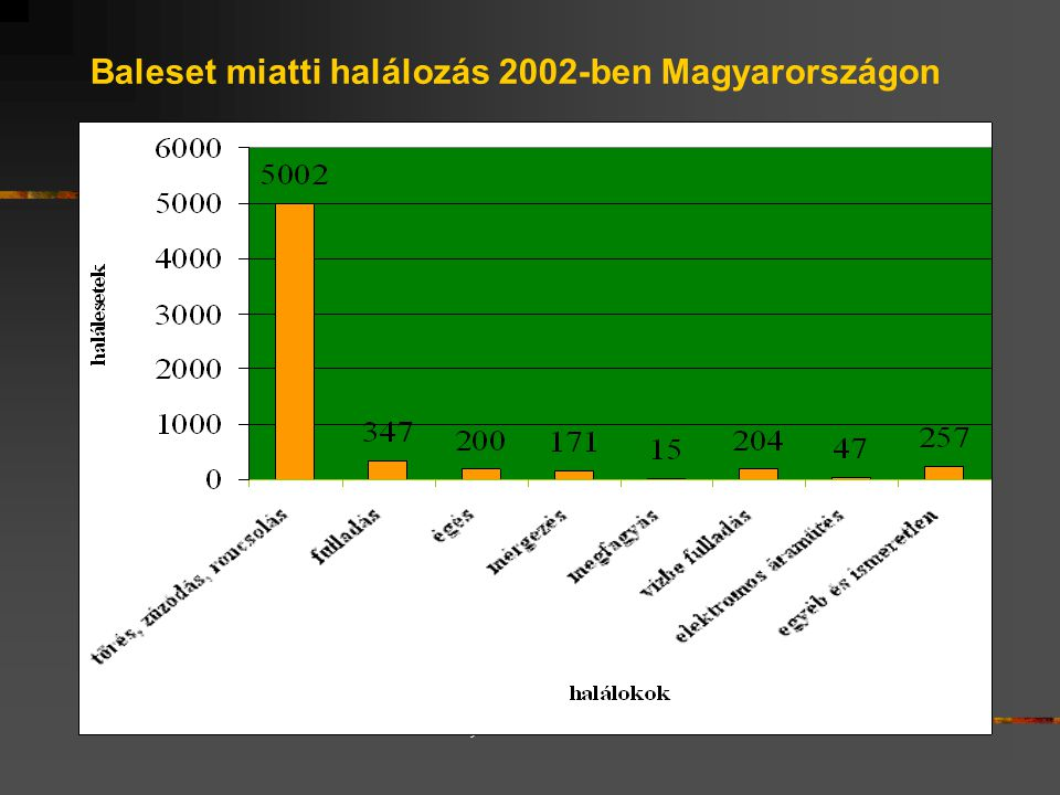 Baleset miatti halálozás 2002-ben Magyarországon 2002-ben: 9 309 fő halt meg ún.