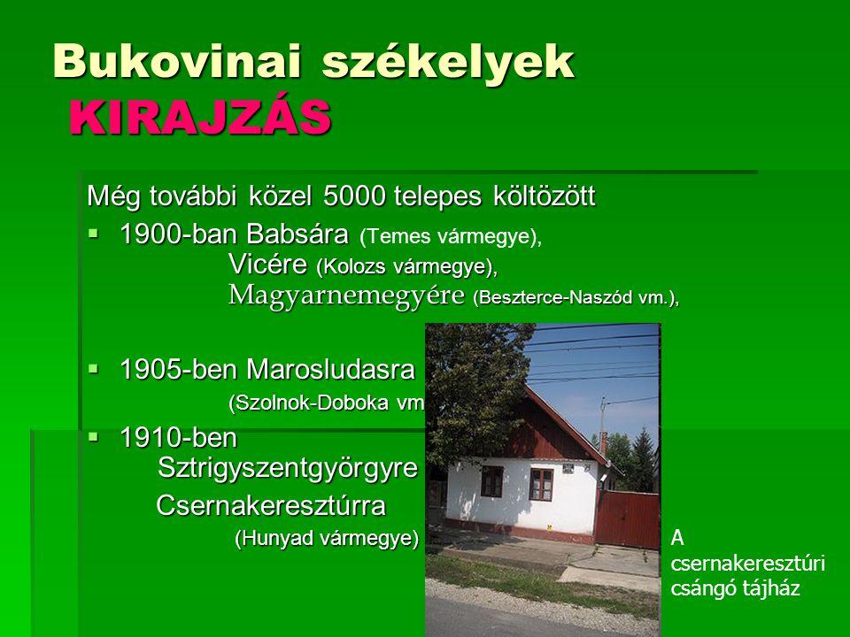 Bukovinai székelyek KIRAJZÁS Még további közel 5000 telepes költözött  1900-ban Babsára Vicére (Kolozs vármegye), Magyarnemegyére (Beszterce-Naszód v