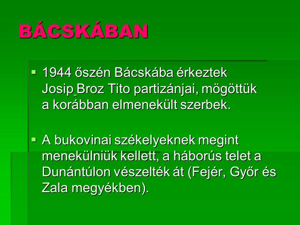 BÁCSKÁBAN  1944 őszén Bácskába érkeztek Josip Broz Tito partizánjai, mögöttük a korábban elmenekült szerbek.  A bukovinai székelyeknek megint menekü