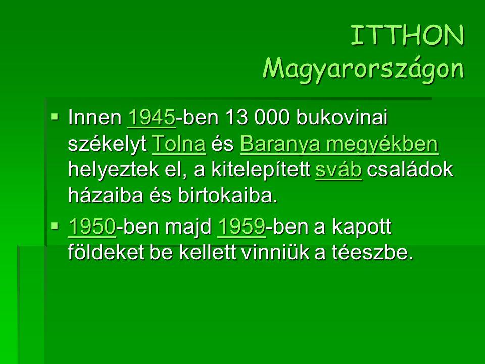 ITTHON Magyarországon  Innen 1945-ben 13 000 bukovinai székelyt Tolna és Baranya megyékben helyeztek el, a kitelepített sváb családok házaiba és birt