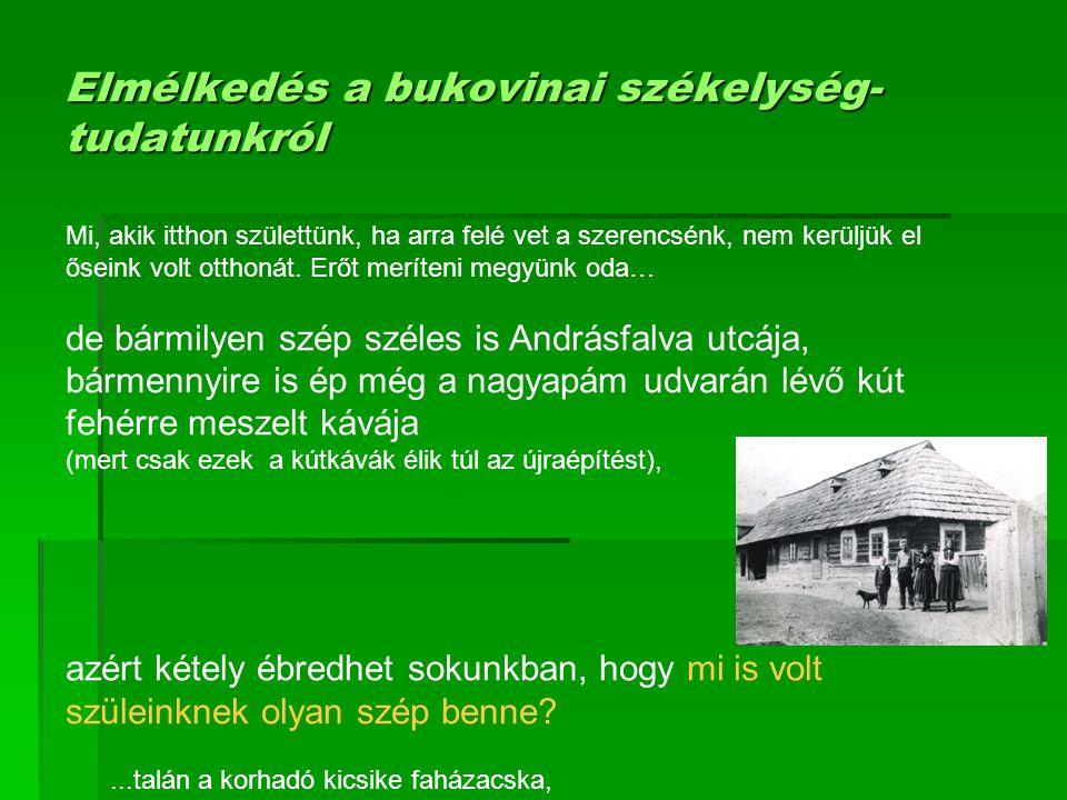 Elmélkedés a bukovinai székelység- tudatunkról Mi, akik itthon születtünk, ha arra felé vet a szerencsénk, nem kerüljük el őseink volt otthonát. Erőt