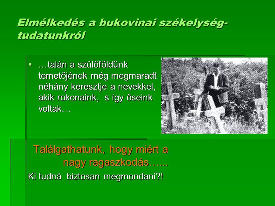 Elmélkedés a bukovinai székelység- tudatunkról  …talán a szülőföldünk temetőjének még megmaradt néhány keresztje a nevekkel, akik rokonaink, s így ős