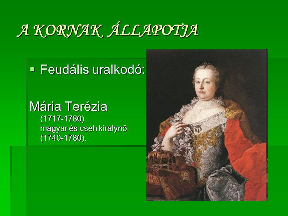 A KORNAK ÁLLAPOTJA  Feudális uralkodó: Mária Terézia (1717-1780) magyar és cseh királynő (1740-1780).