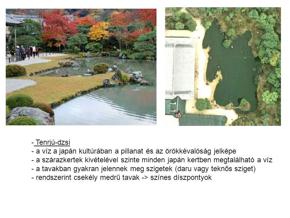 - Tenrjú-dzsi - a víz a japán kultúrában a pillanat és az örökkévalóság jelképe - a szárazkertek kivételével szinte minden japán kertben megtalálható a víz - a tavakban gyakran jelennek meg szigetek (daru vagy teknős sziget) - rendszerint csekély medrű tavak -> színes díszpontyok