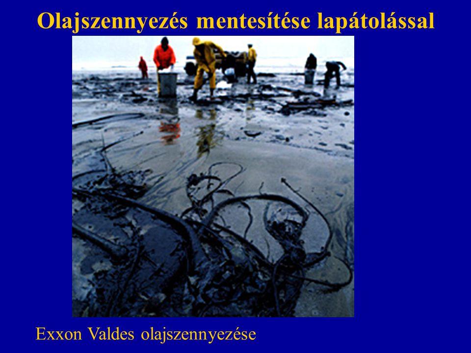 Olajszennyezés mentesítése lapátolással Exxon Valdes olajszennyezése