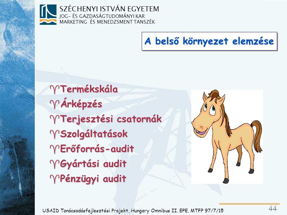 SZÉCHENYI ISTVÁN EGYETEM JOG- ÉS GAZDASÁGTUDOMÁNYI KAR MARKETING ÉS MENEDZSMENT TANSZÉK 45 USAID Tanácsadásfejlesztési Projekt, Hungary Omnibus II.
