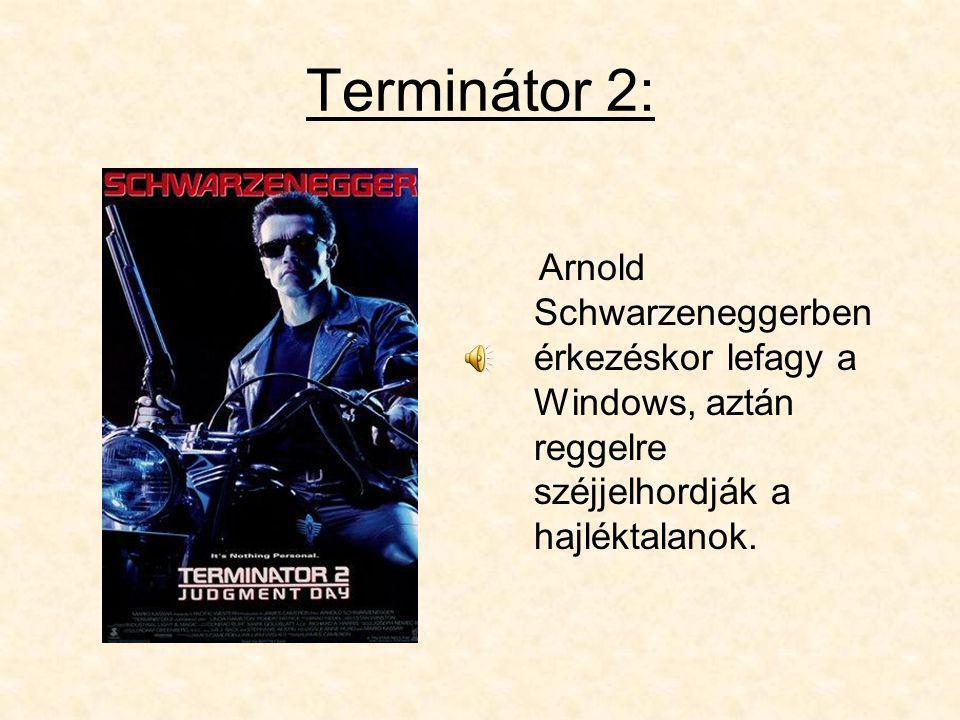 Terminátor 2: Arnold Schwarzeneggerben érkezéskor lefagy a Windows, aztán reggelre széjjelhordják a hajléktalanok.