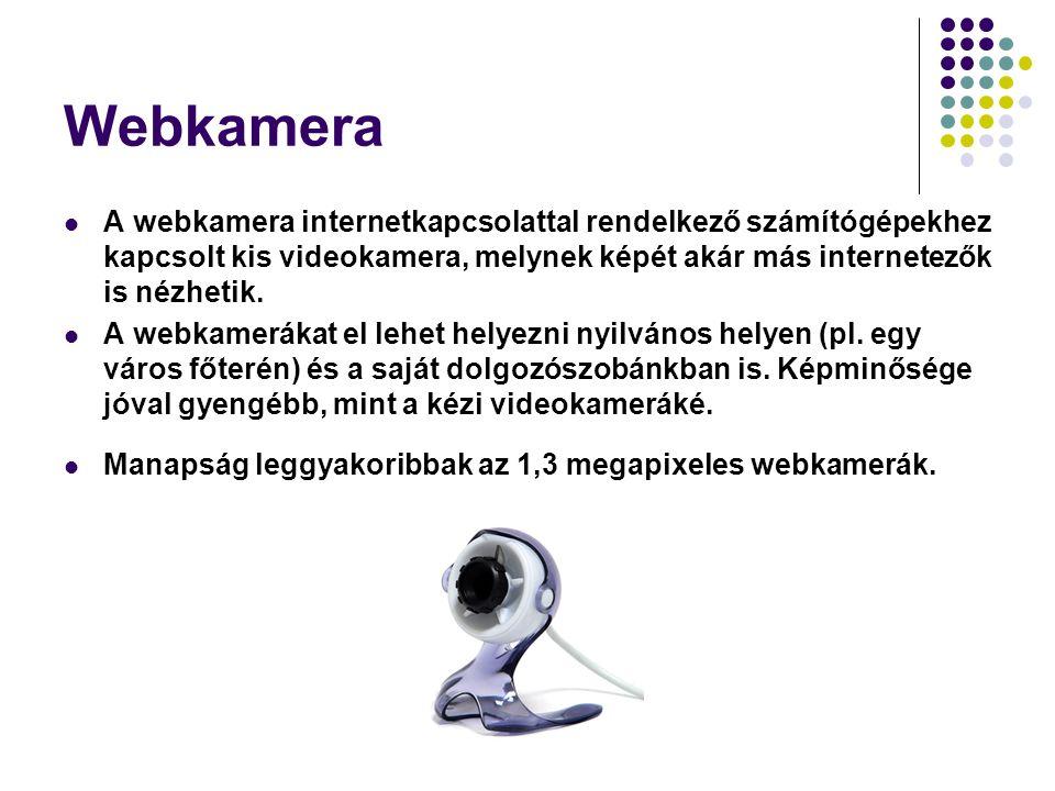 Webkamera A webkamera internetkapcsolattal rendelkező számítógépekhez kapcsolt kis videokamera, melynek képét akár más internetezők is nézhetik. A web