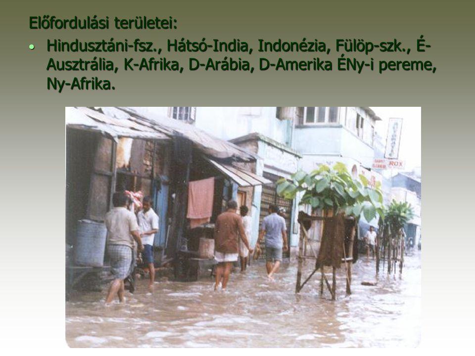 Előfordulási területei: Hindusztáni-fsz., Hátsó-India, Indonézia, Fülöp-szk., É- Ausztrália, K-Afrika, D-Arábia, D-Amerika ÉNy-i pereme, Ny-Afrika.