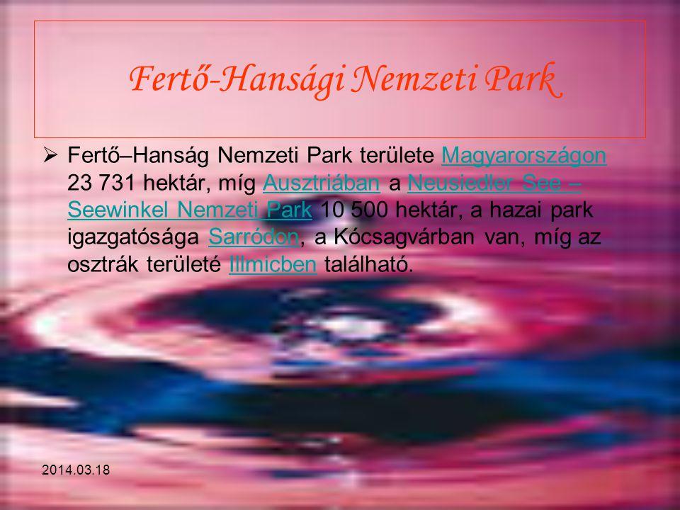 2014.03.18 Fertő-Hansági Nemzeti Park  Fertő–Hanság Nemzeti Park területe Magyarországon 23 731 hektár, míg Ausztriában a Neusiedler See – Seewinkel