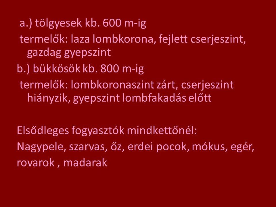 a.) tölgyesek kb. 600 m-ig termelők: laza lombkorona, fejlett cserjeszint, gazdag gyepszint b.) bükkösök kb. 800 m-ig termelők: lombkoronaszint zárt,